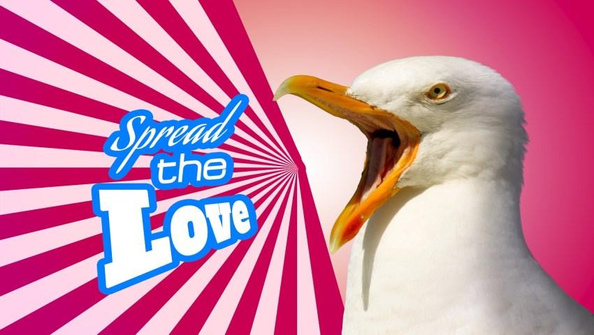 Promote Tweet Spread The Love