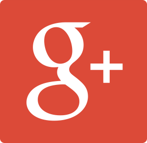Google Plus Business Services